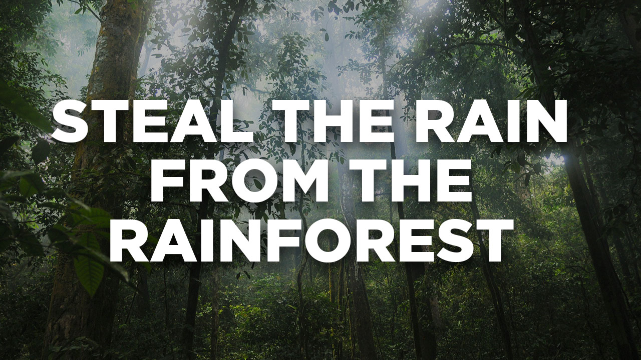 Steal the rain