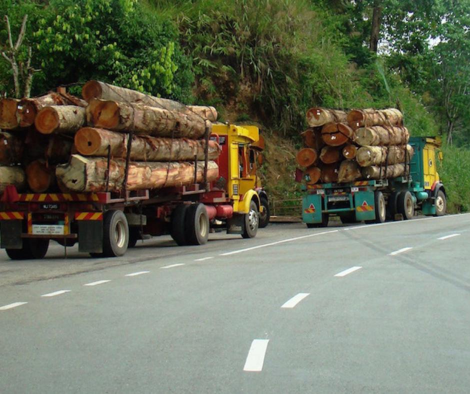 Road Logging